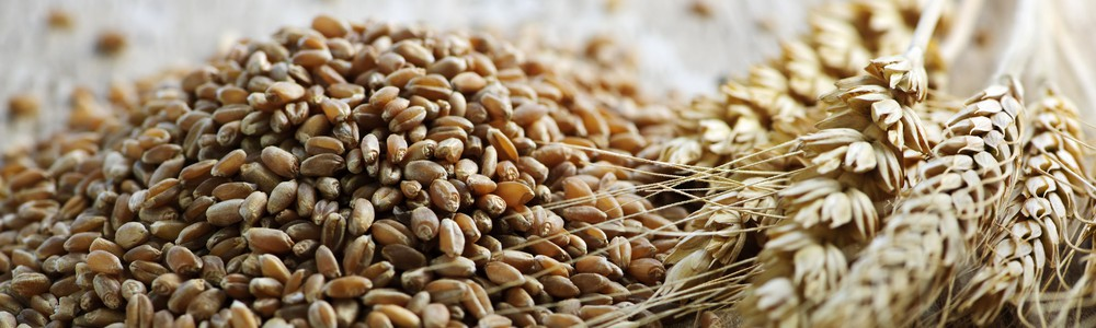 wholegrains are healthy carbs