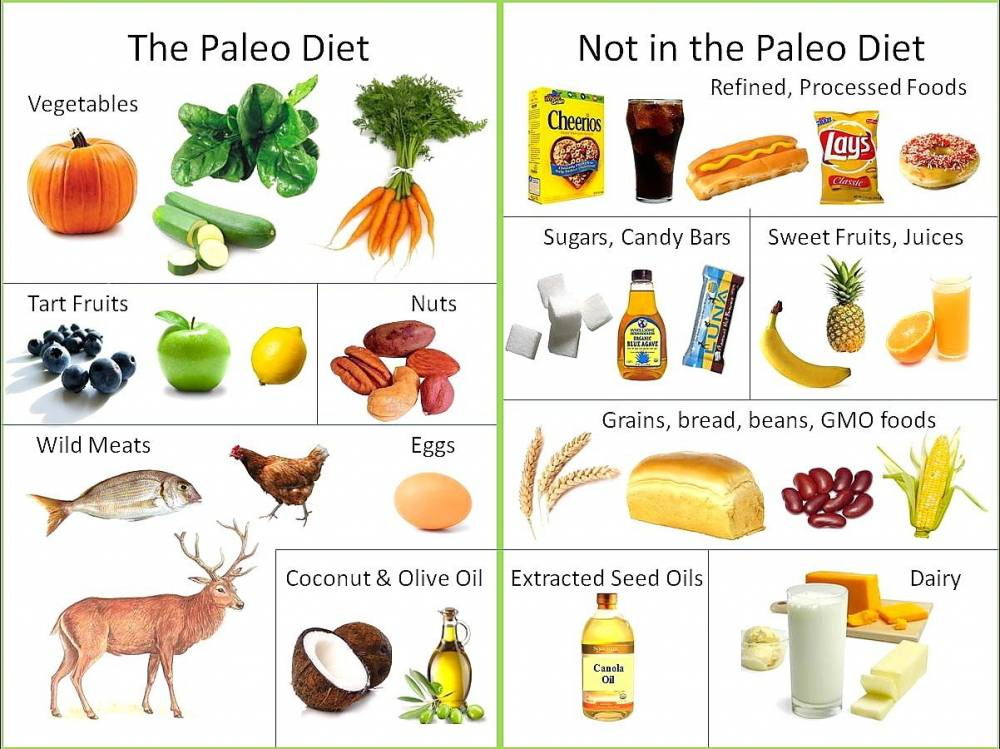 Paleo Diet For Weight Loss: Yay or Nay ?