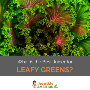 """Leafy green with the title """"What is the Best Juicer for Leafy Greens?"""""""